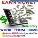 Online Work - Data Entry