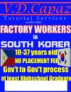 Factory Workers in Korea